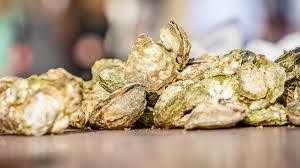 Oyster Season In Savannah   Visit Savannah Princes Hot Chicken Nashville Restaurant Review Zagat Savannah Getaways Lowcountry Restaurants Punch Bowl Social Austin With Meeting Space Visit Fellowship Acvities First Presbyterian Church Of The Pirates House Georgia Hubpages Menu At Cantonese Chef 5204 Waters Ave Prices Ga 2018 Savearound Coupon Book Market Walk Phillips Edison Company Houlihans Home Prices J Christophers Familiar Family Food Flair Retail For Lease In Oglethorpe Mall Ggp