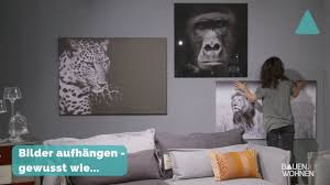 dekotipp bilder richtig aufhängen schwarz weiß fotos im wohnzimmer