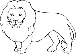 Wild Animals Coloring Pages Printable Animal Free