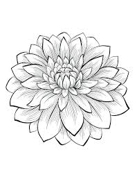 Flower Print Out Coloring Pages Printable Adults Find This Pin And More On
