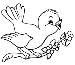 Bird Inside Spring Birds Coloring Pages