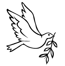 Dove Bird FLy With Olive Leaves Coloring Pages Free Printable ClipArt Best