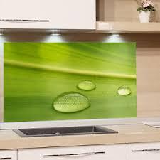 details zu küchenrückwand glas spritzschutz herd küche grün blatt natur glasbild herd wand