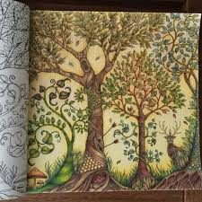 Adult Coloring Jardim Colorido Parte II Enchanted Forest BookAdult