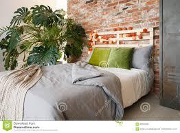 schlafzimmer mit monstera stockfoto bild kugeln 90502568
