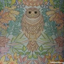 The Owl In My Secret Garden Colouring Book Secretgarden Adultcoloringbook Adultcolouring Johannabasford