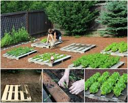DIY Recycled Pallet Garden Planting Tutorial1
