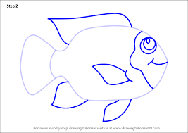 Learn How To Draw A Tilapia Fish For Kids Animals Step By