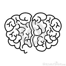 Human Brain Coloring Book Download Silhouette Top View Stock Illustration Image 81283274