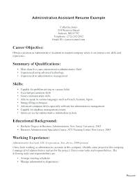 Examples Of Resume Profile Statements For Resumes Good Objective Statement Customer Service