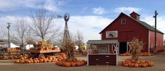 Pumpkin Patch Colorado Springs 2015 by Fall Pumpkin And Harvest Festivals 2017 In Colorado The Denver Ear