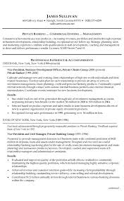 Banking Financial Example Resume For And Professional