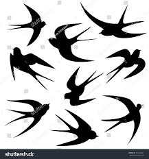 Swallows Tattoo Template Vector Silhouette Stock Vector 357458897 ... Swallow Tattoo Shoulder Blades 100 Small Bird Tattoos Designs Colorful Barn With Rose And Star Design By Renee 55 Best Golondrinas Images On Pinterest Bird Swallows And Art A Point Green Violet Custom Studio Royalty Free Stock Photo Image 25723635 Images For Silhouette Personal Interest Swallow Wikipedia 24 Henna Tattoos Tattoo 2016 What Your Means Secret Ink 50 Coolest On Chest Black Flying Banner Stencil Mithu Hassan