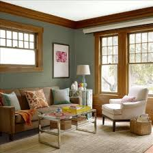 Brown Couch Decor Ideas by Elegant Green Color Schemes For Living Rooms And Best 25 Sage