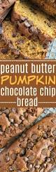Starbucks Pumpkin Bread Recipe Pinterest by 2960 Best Pumpkin Love Images On Pinterest Pumpkin Recipes