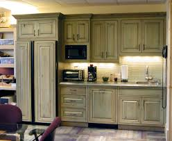 Adorable Green Kitchen Cabinets With Refrigerator Shelves As Vintage Decors Ideas