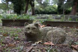 Crushingly Sad Photos Of One Of America's Oldest Pet Cemeteries - VICE Qa More Help For Dogfriendly Gardens Sunset Beetles Backyard And Beyond Page 6 Best 25 Dog Backyard Ideas On Pinterest Potty Bathroom What To Do With Your Pets Remains After Death I Used Concrete Blocks As Planters To Keep My Dog From Digging 26 Burrowing Animals Pictures You Need See Right Now Man Admits Shooting Burying In Westside Jacksonville Is Your A Bone Or Other Objects Gotta Find That Peanut Bury It My Wildlife Squirrels Burying Nuts Documentary Youtube Mountain Lion Deaths Creasing Near Santa Monica Mountains Abc7com Squirrel Nut Frenzy