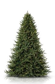 Shop Artificial Christmas Trees By Height