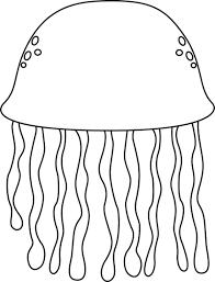Black and White Jellyfish Clip Art Black and White Jellyfish Image