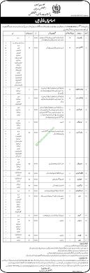 statistics bureau pakistan bureau of statistics november 2016 nts application