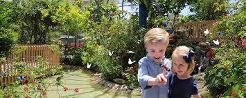 Wilton Manors Halloween Theme 2015 by Butterfly World U2013 Where 20 000 Exotic Butterflies And Birds Take