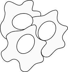 egg clipart black and white 1706