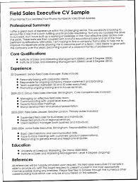 Sales Executive Resume CPBZ Field Cv Sample