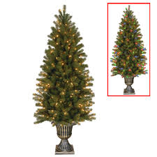 9 Ft Pre Lit Pencil Christmas Tree by Buy The 6 Ft Pre Lit Feel Real Potted Downswept Douglas Fir Slim