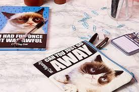 cat merchandise primark to sell official grumpy cat merchandise retail gazette
