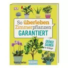 große zimmerpflanzen kaufen vergleichen bis 45