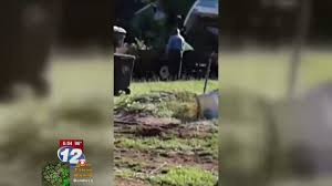 100 Trucks And More Augusta Ga Caught On Camera Lawn Business Unloads In County Dump Truck With