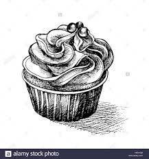 Vector black and white sketch illustration of cute creamy sweet cupcake with big icing and eatable decorn be used for greetin