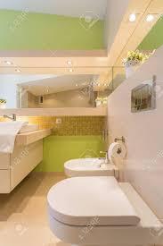 grüne wände im großen badezimmer in der wohnung