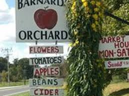 Best Pumpkin Patch Lancaster Pa by Go Out And Pick Your Own Apples Around Philly This Fall