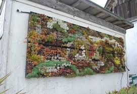 Source Find More Succulent Vertical Gardens
