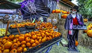 Valas Pumpkin Patch Jobs by The Hobbit The Lord Of The Rings And Tolkien The One Ring