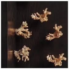 Gold Leaf Design Group – Modish Store