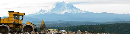 Seattle Christmas Tree Disposal 2015 by Tree Cycling Options From King County U0027s Solid Waste Division