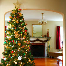 Dunhill Fir Christmas Trees by Artificial Christmas Tree Buying Guide October 2017