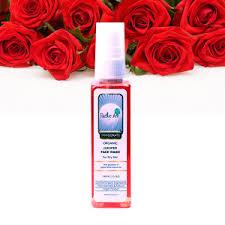 Organic Juniper Face Wash Rustic Art Chemical Free Dry Skin