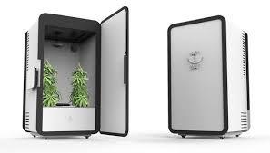 chambre de culture cannabis complete leaf armoire frigo connecte pour faire pousser des plants de
