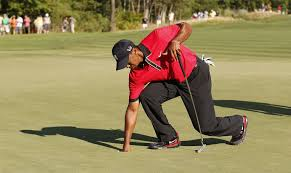 What Are Tiger Woods'