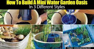 Aquascape Patio Pond Canada by How To Make A Container Water Garden For Your Deck