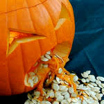 Pumpkin Patch Fresno Ca First News by Fresno U0027s Pumpkin King Struggles To Supply Region As Drought Takes