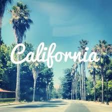 California Hipster Cute Hot Summer Love Palm Tree Tumblr