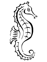 Seahorse Coloring Pages 12