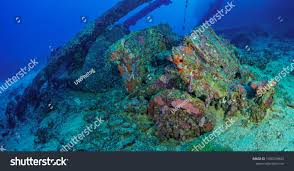 Wreck Truk Lagoon Stock Photo (Royalty Free) 1050239402 - Shutterstock Top 2 Best Truk Lagoon Liveaboard Trips The Adventure Junkies Kawanishii H8k2 Emily Flying Boat Tom Frohnhofer Diving The San Francisco Maru In Chuuk Micronesia Trucks Truk Lagoon Becky Schott Wm Sm Scuba Freediving Carlos Garcia Dive With Diverse Travel Ultimate Wreck Divers Haven Wrecks From Odyssey 1422nd April 2018 Nippo Of Imperial Japanese Navy Coral And Sponges On A Mast Of Fujikawa Shipwreck Thankful For Rescue Coast Guard Compass