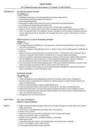 Download Business Intern Resume Sample As Image File