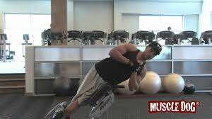 muscledog com presents roman chair oblique crunches youtube