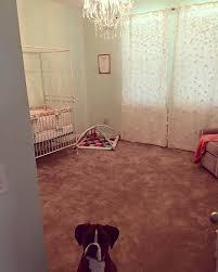 Bratt Decor Venetian Crib Daybed Kit by Joy Canopy Crib Distressed White